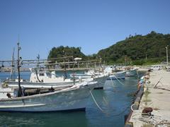 karashima.jpg